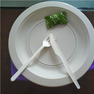 一次性可降解餐具