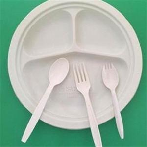 一次性环保餐具